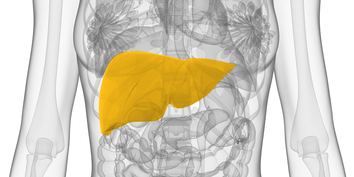 Liver Oncology