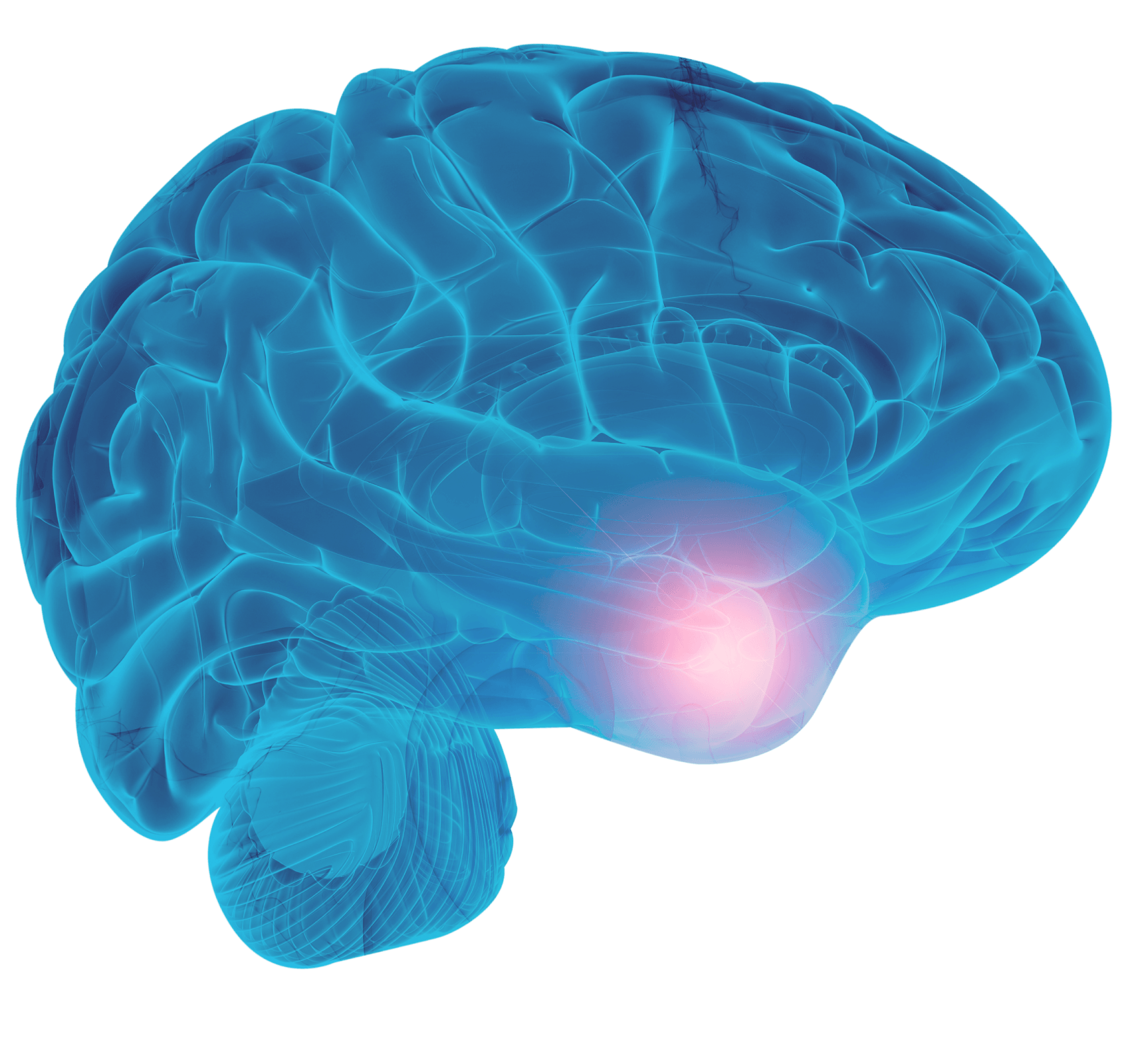 Collaborative imaging Brain Scan