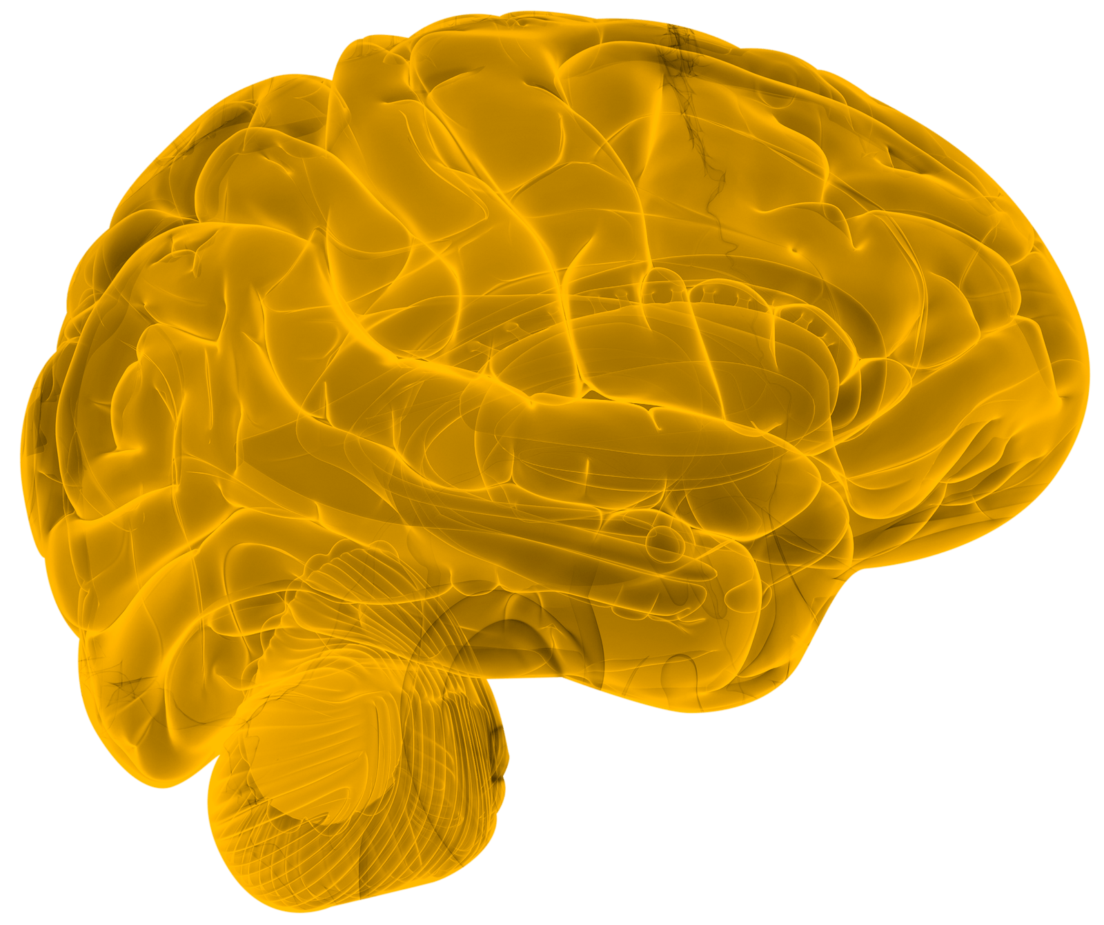 Collaborative imaging Brain